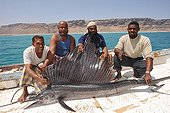 Fisherman and sailfish Yemen Socotra Island ; The aride island only allows fishing and cattle.<br>