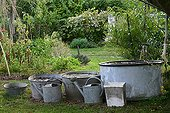 Rainwater collection in a garden