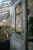 Greenhouse in a garden in spring