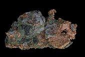 Cuivre natif sur fond noir Peninsule Keweenaw Michigan USA ; Cu
