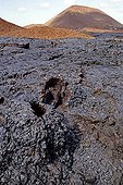 Pillow lava on the Galapagos Islands