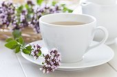 Sweet Marjoram flower and Sweet Marjoram herbal tea in a cup