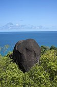 Granite rock on the island of Mahe in the Seychelles