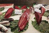 Northern Bluefin Tuna at the Boqueria Market in Barcelona