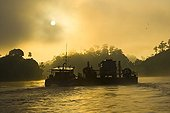 Ferry carrying vehicle across River Kinabatangan Borneo