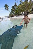 Little girl stroking a Humphead Wrasse in French Polynesia