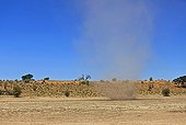 Small tornado of sand in the Kalahari Desert in RSA