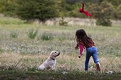 Girl playing with a young Golden Retriever Provence ; Age: 3 months