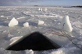 Ice Hole for Ice Diving, White Sea, Karelia, Russia