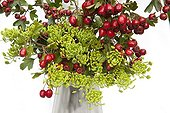 Sweetbriar and parsnip in fruit bouquet in studio