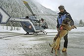 Intervention with avalanche dog from a helicopter