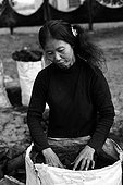 Woman making charcoal in Cambodia