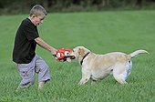 Boy playing with a Labrador in a meadow France