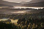 Bohemian Forest in the morning mist Czech Republic