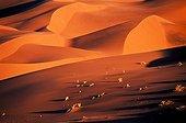Sand dunes at sunset Sossusvlei Namibia