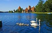 Castle of Trakei, Trakei, Lithuania