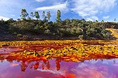 Red water Iron loaded in the Rio Tinto Andalusia Spain