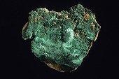 Malachite originaire de Sibérie Russie ; Dimension : 9 cm de large. Collection École des mines