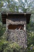 Hunter in a treestand while hunting Rhinau France
