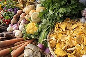 Stall of Vegetables and Mushrooms in fallFrance