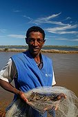 Man showing of black tiger shrimp in a net Madagascar ; Shrimp farms in Madagascar is considered the greenest in the world and supported by WWF and UNESCO.