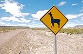 Sign warning of the presence of Alpaca Bolivia