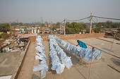 Drying of plastic bags collected in the street India ; After being collected in the streets of Delhi, sorted and cleaned, used bags are dried before processing your luggage and other fashion accessories or decoration.