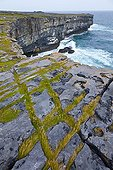 Black Fort Cliffs Inishmore Island Ireland