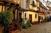 Lane Eguisheim wine village in Alsace France