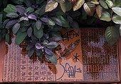 Bowl in a garden ; Landscapers: Ossart-Maurières<br>Bowls: Rachid Koraïchi