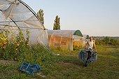 Havest of vegetables in Gocagne network garden