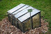 Winter mulch in a greenhouse Jardin des Plantes Paris ;