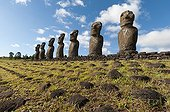 Rangée de Moaïs Ahu Akivi PN Rapa Nui Ile de Pâques