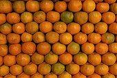 Oranges on a stall Kerala India