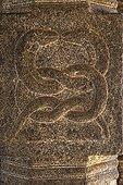 Representation of Cobra Padmanabhapuram Palace Kerala India
