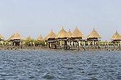 Millet granaries on stilts in the mangrove-Joal Fadiouth
