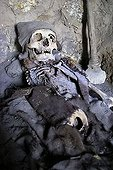 Pre-Inka Mummy in a cave, Uyuni Highlands, Bolivia