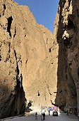 Gorges de Todra, Todra Gorge, Atlas Mountains, Morocco, Africa