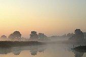 Morning mist on the Elbe Meadows near Dessau, Middle Elbe Biosphere Reserve, Saxony Anhalt, Germany, Europe