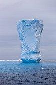Iceberg  au large de la Terre Adélie Antarctique