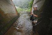 Recherche de Salamandre géante du Japon dans une rivière ; Le bétonnage systématique des cours d'eau est un problème majeur pour les salamandres. Le chercheur Sumio Okada s'est intéressé à l'existence des différentes classes d'âges dans un même cours d'eau et tente de comprendre quels sont les critères qui font d'un cours d'eau un lieu favorable à la reproduction et au développement des salamandres. Grâce à la télémétrie les mouvements des animaux sont consignés et analysés.