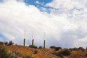 Chimneys of a power plant Arizona USA
