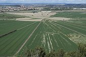 Fields near the Oppidum Ensérune in Hérault France