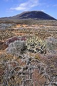 Graciosa Island in the Chinijo archipelago NP Canary Islands