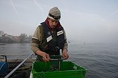 Fisherman & net on his Boat for alevin Eel fish Loire river