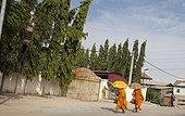 Monks walking down a street in the outskirts of Phnom Penh
