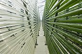 Microalgae production plant in Germany ; Cleaning. Roquette company
