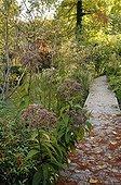 Wooden path in a garden in autumn ; Designer: Pierre-Alexandre RISSER