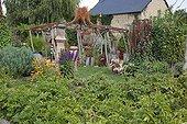 Flowered organic kitchen garden
