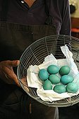 Making of Easter eggs to decorate a table ; Designer: Pierre-Alexandre RISSER
